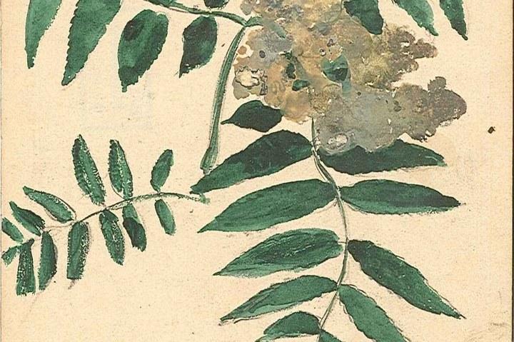 1237-18.jpg