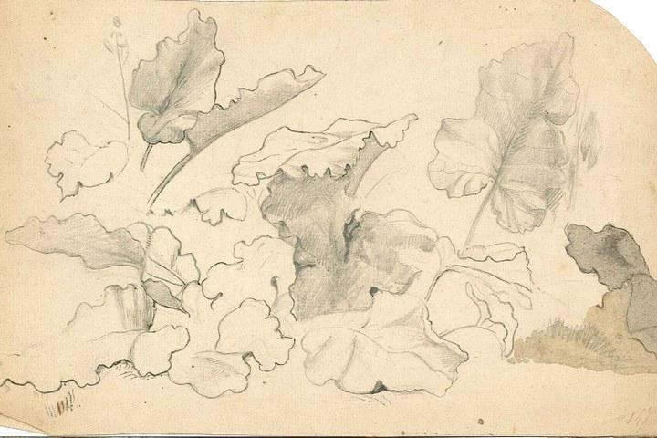 1237-9.jpg