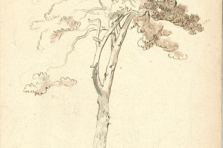 1238-10.jpg