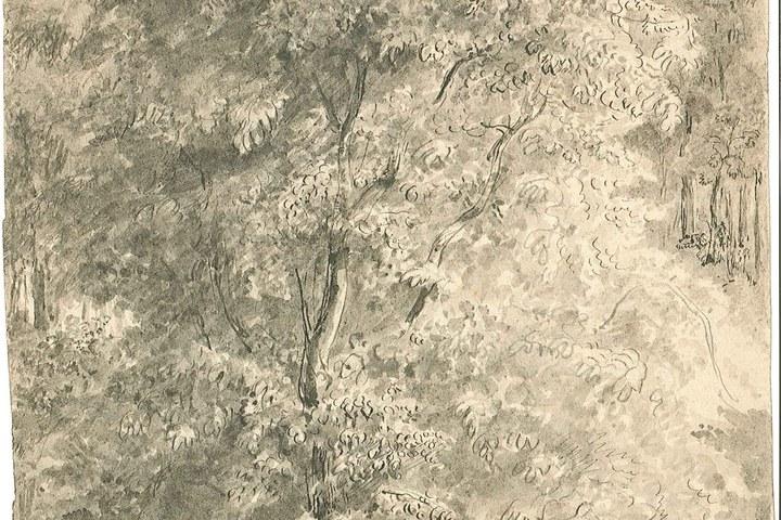 1238-11.jpg