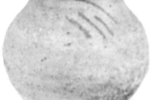 1657.jpg