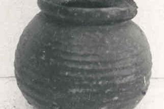1669.jpg