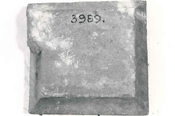 3989.jpg