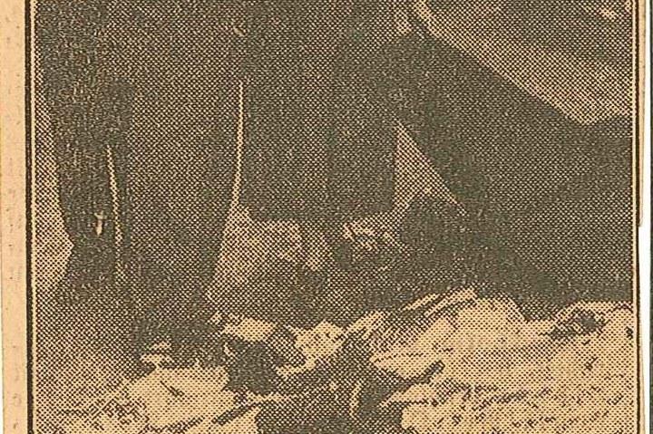 5491-1.jpg